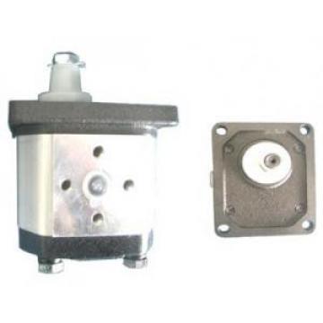 Atos Egypt PFG-3 fixed displacement pump